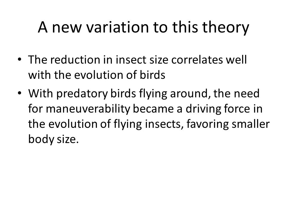 A new variation to this theory The reduction in insect size correlates well with the evolution of birds With predatory birds flying around, the need for maneuverability became a driving force in the evolution of flying insects, favoring smaller body size.