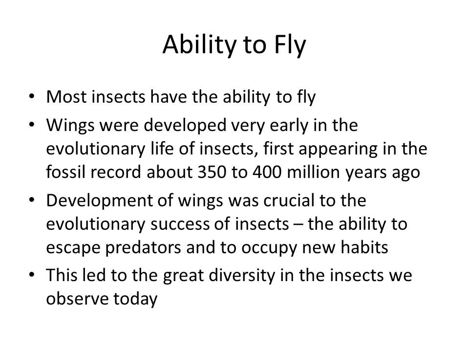 Ability to Fly Most insects have the ability to fly Wings were developed very early in the evolutionary life of insects, first appearing in the fossil record about 350 to 400 million years ago Development of wings was crucial to the evolutionary success of insects – the ability to escape predators and to occupy new habits This led to the great diversity in the insects we observe today