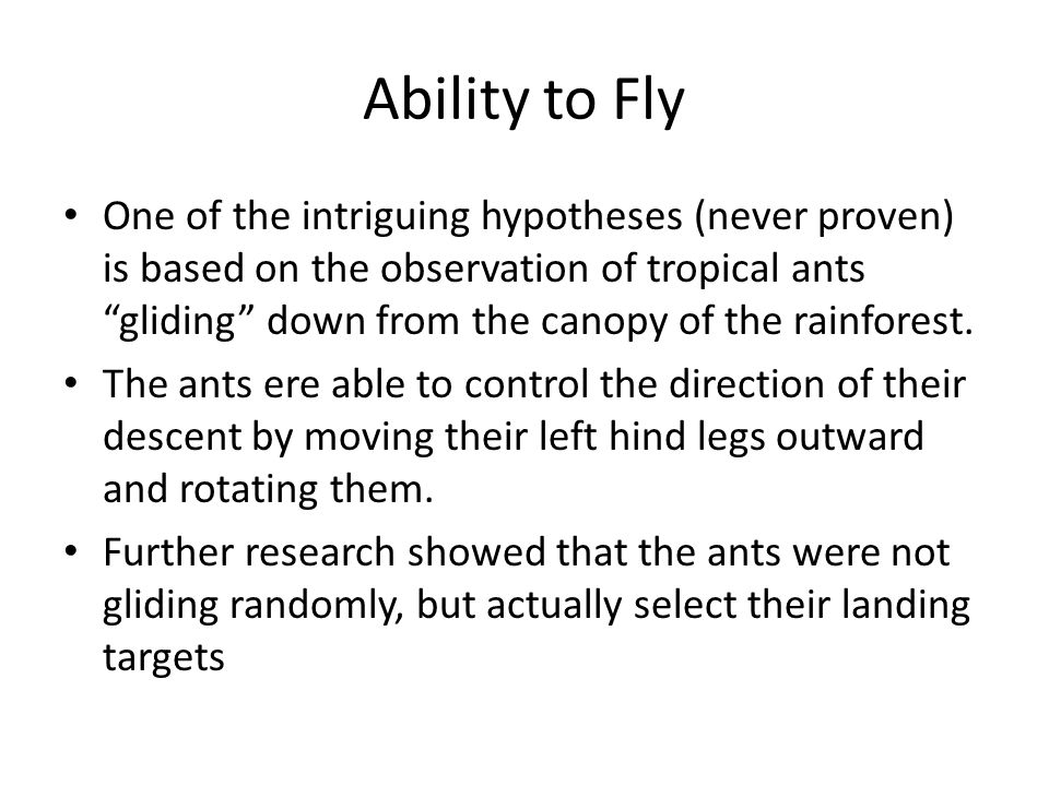 Ability to Fly One of the intriguing hypotheses (never proven) is based on the observation of tropical ants gliding down from the canopy of the rainforest.