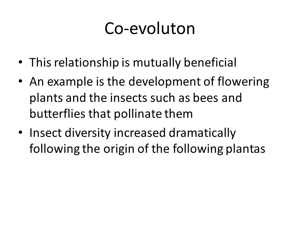 Co-evoluton This relationship is mutually beneficial An example is the development of flowering plants and the insects such as bees and butterflies that pollinate them Insect diversity increased dramatically following the origin of the following plantas