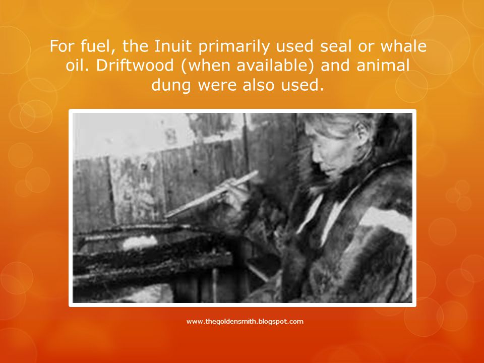 For fuel, the Inuit primarily used seal or whale oil.