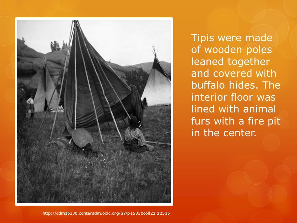 Tipis were made of wooden poles leaned together and covered with buffalo hides.
