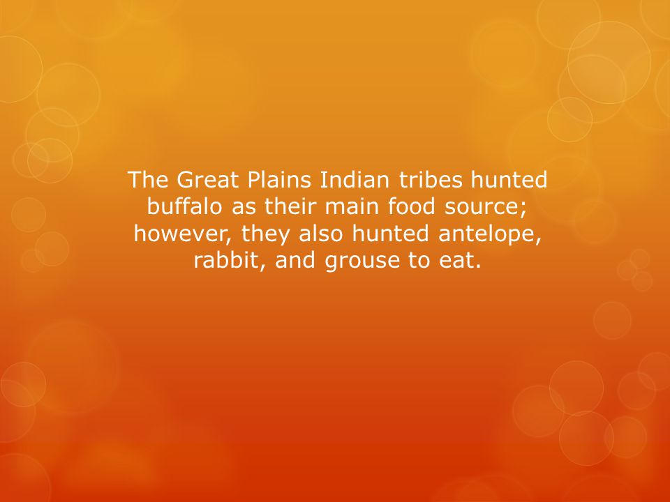 The Great Plains Indian tribes hunted buffalo as their main food source; however, they also hunted antelope, rabbit, and grouse to eat.