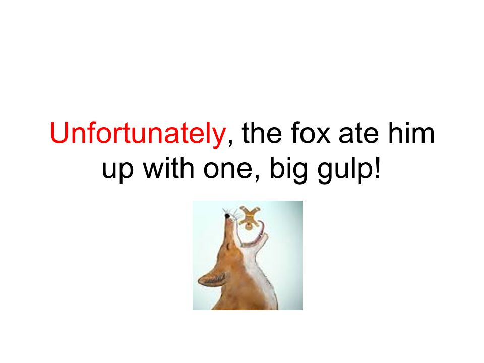 Unfortunately, the fox ate him up with one, big gulp!