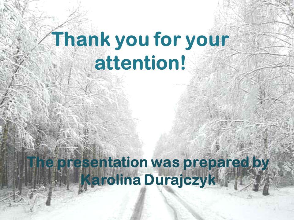 Thank you for your attention! The presentation was prepared by Karolina Durajczyk