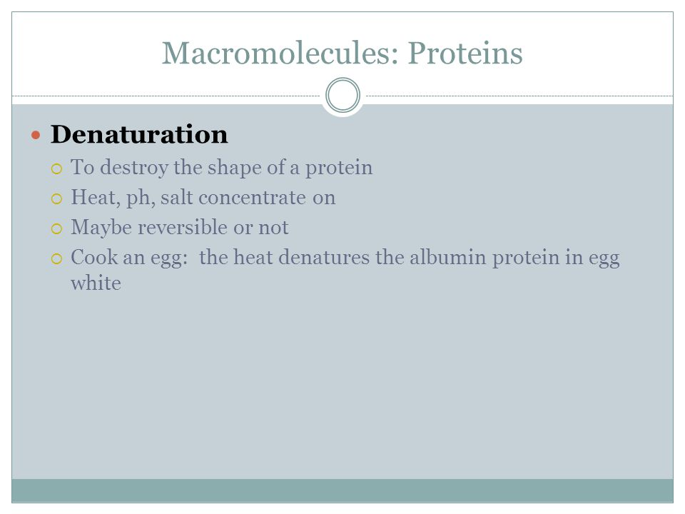 Macromolecules: Proteins Denaturation  To destroy the shape of a protein  Heat, ph, salt concentrate on  Maybe reversible or not  Cook an egg: the heat denatures the albumin protein in egg white