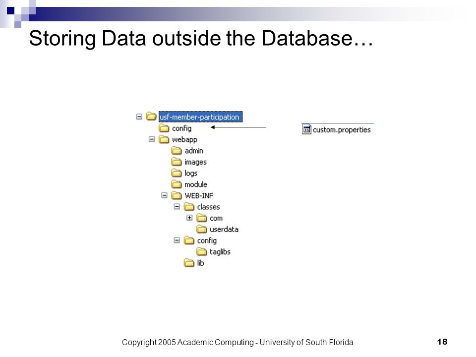 Copyright 2005 Academic Computing - University of South Florida18 Storing Data outside the Database…