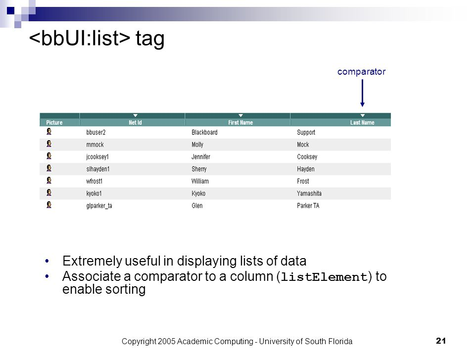 Copyright 2005 Academic Computing - University of South Florida21 tag Extremely useful in displaying lists of data Associate a comparator to a column ( listElement ) to enable sorting comparator