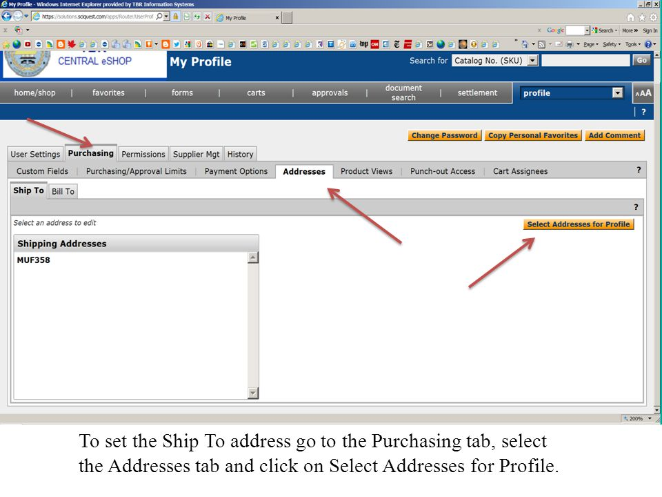 To set the Ship To address go to the Purchasing tab, select the Addresses tab and click on Select Addresses for Profile.