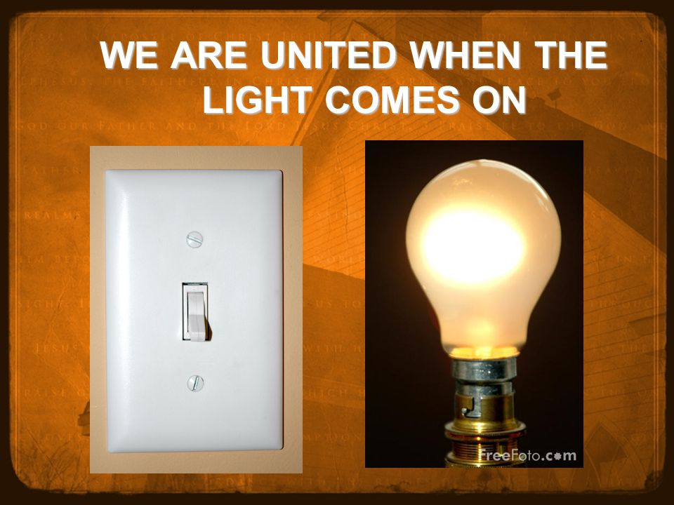WE ARE UNITED WHEN THE LIGHT COMES ON