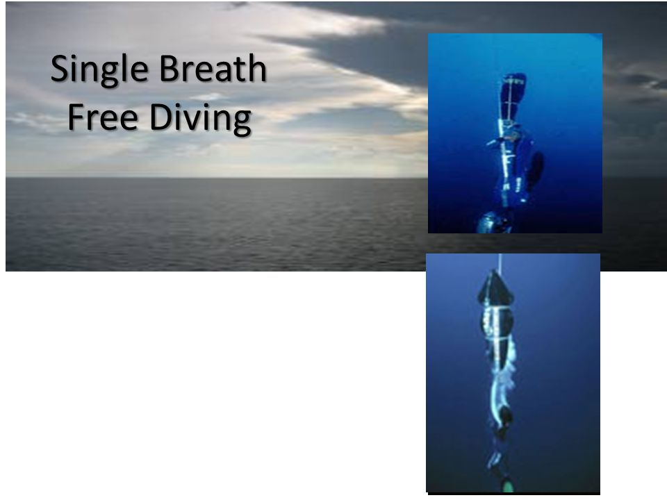 Single Breath Free Diving