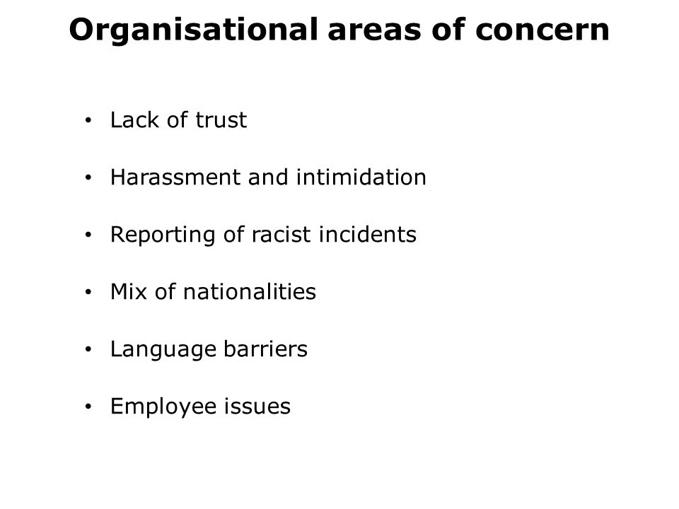Organisational areas of concern Lack of trust Harassment and intimidation Reporting of racist incidents Mix of nationalities Language barriers Employee issues