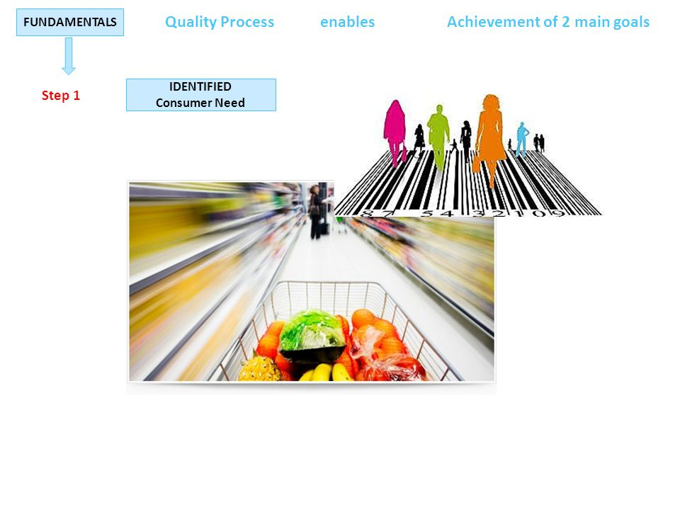 IDENTIFIED Consumer Need Step 1 FUNDAMENTALS Quality ProcessenablesAchievement of 2 main goals