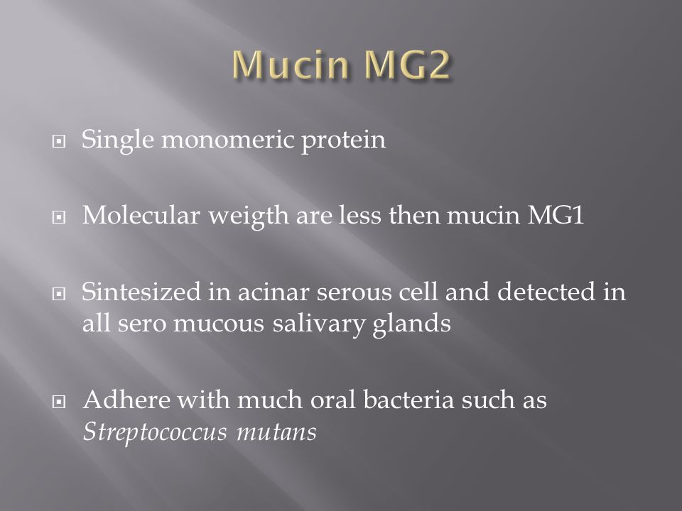  Single monomeric protein  Molecular weigth are less then mucin MG1  Sintesized in acinar serous cell and detected in all sero mucous salivary glands  Adhere with much oral bacteria such as Streptococcus mutans