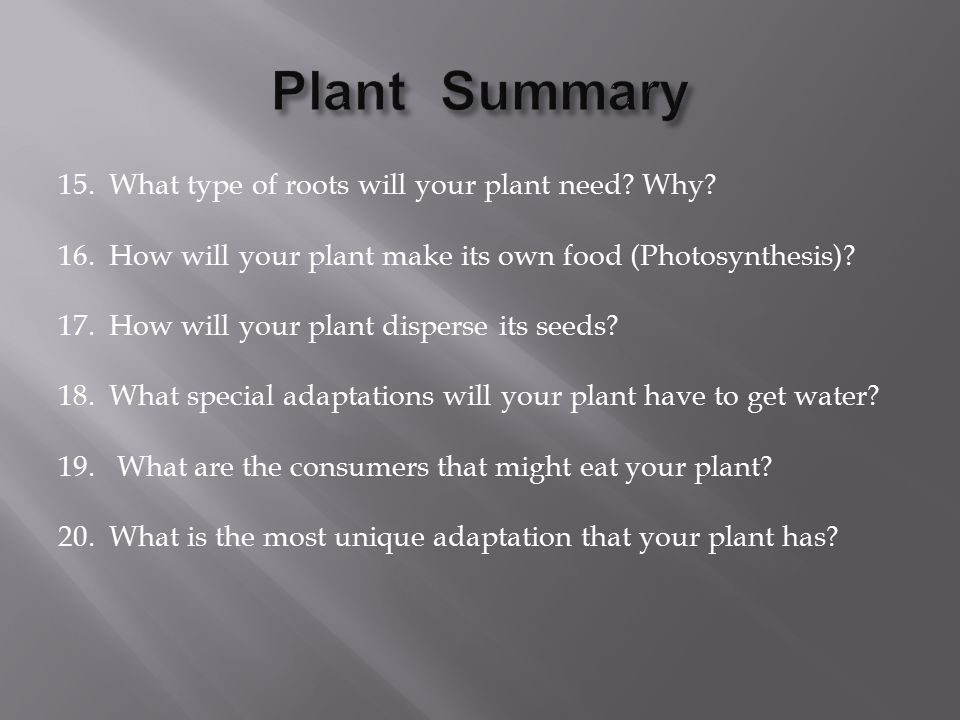 15. What type of roots will your plant need. Why.