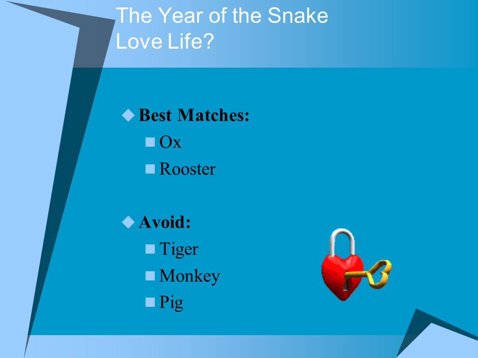 The Year of the Snake Love Life  Best Matches: Ox Rooster  Avoid: Tiger Monkey Pig