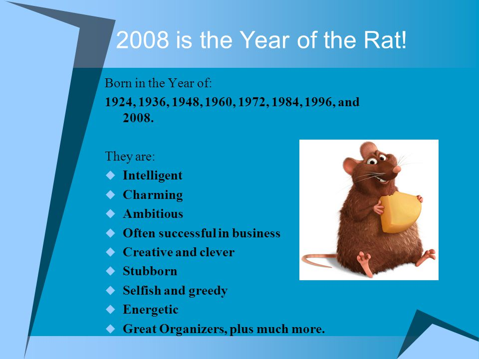 2008 is the Year of the Rat.