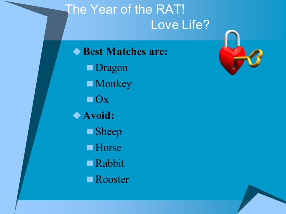The Year of the RAT. Love Life.
