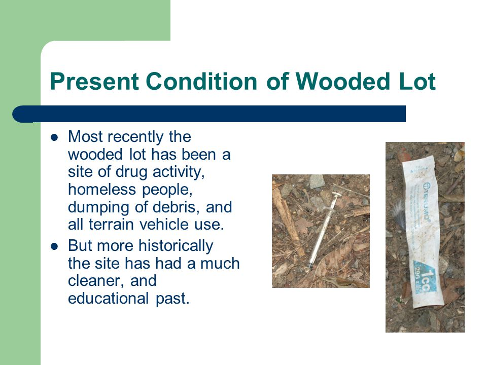 Present Condition of Wooded Lot Most recently the wooded lot has been a site of drug activity, homeless people, dumping of debris, and all terrain vehicle use.