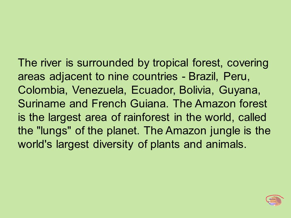 The river is surrounded by tropical forest, covering areas adjacent to nine countries - Brazil, Peru, Colombia, Venezuela, Ecuador, Bolivia, Guyana, Suriname and French Guiana.