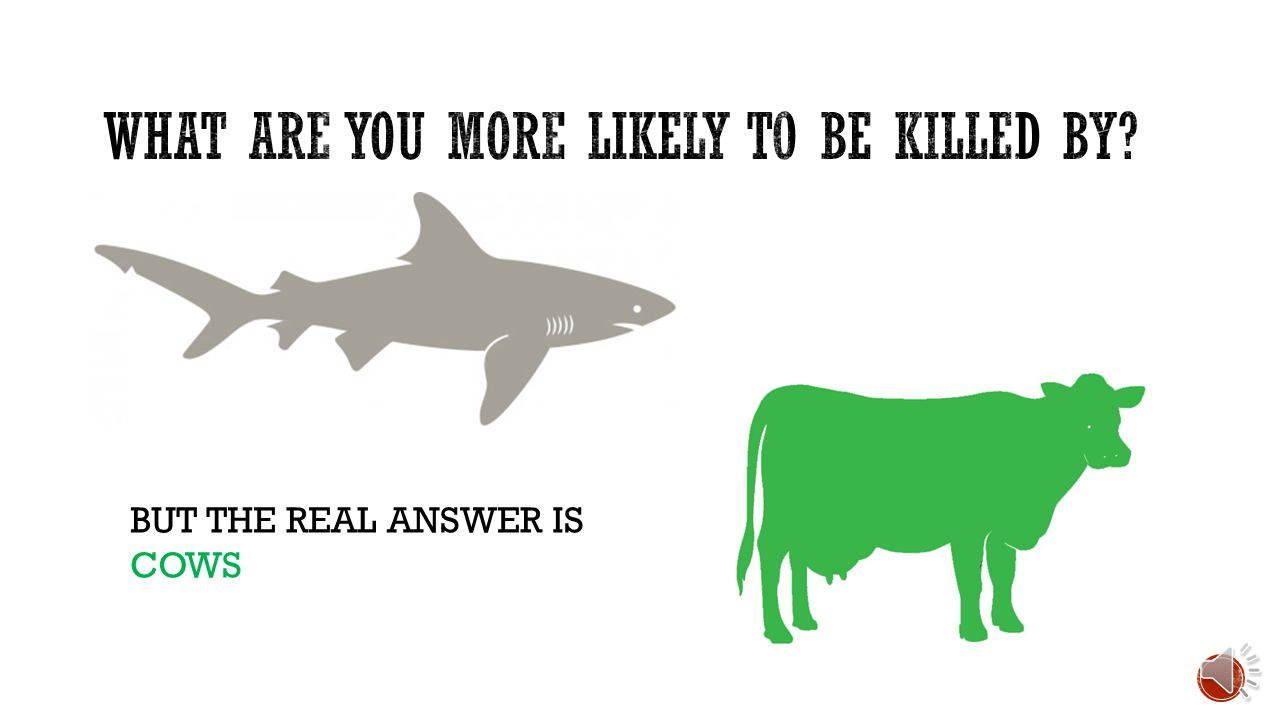 MOST PEOPLE WOULD SAY SHARKS