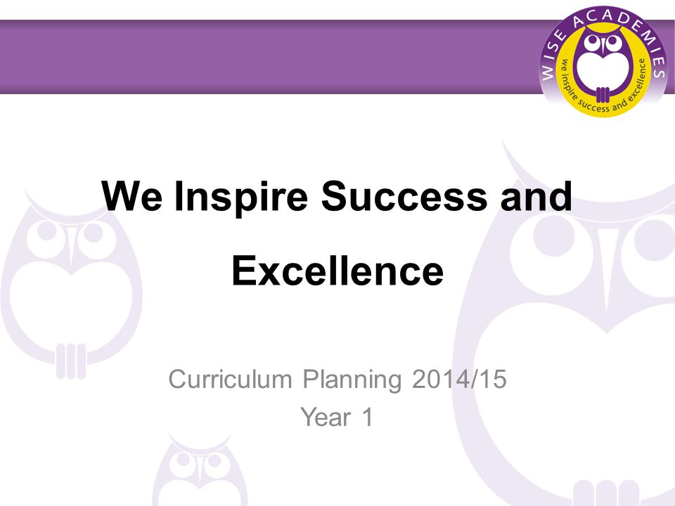 We Inspire Success and Excellence Curriculum Planning 2014/15 Year 1