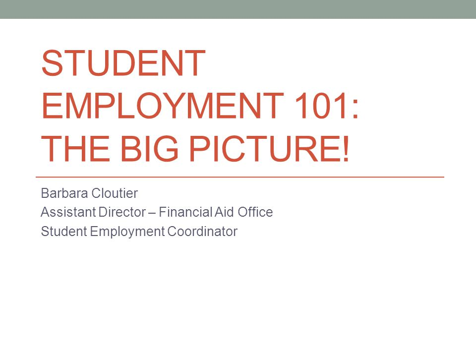 STUDENT EMPLOYMENT 101: THE BIG PICTURE.