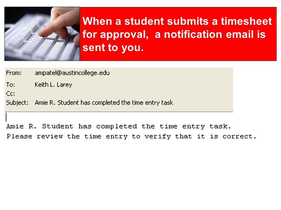 WebHopper, Student Timesheets, and You Students use WebHopper to