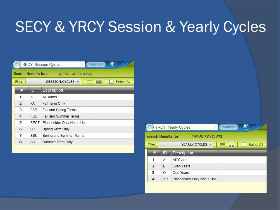 SECY & YRCY Session & Yearly Cycles