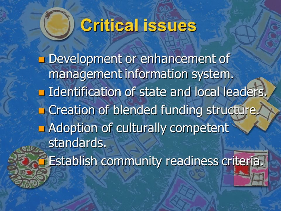 Critical issues n Development or enhancement of management information system.