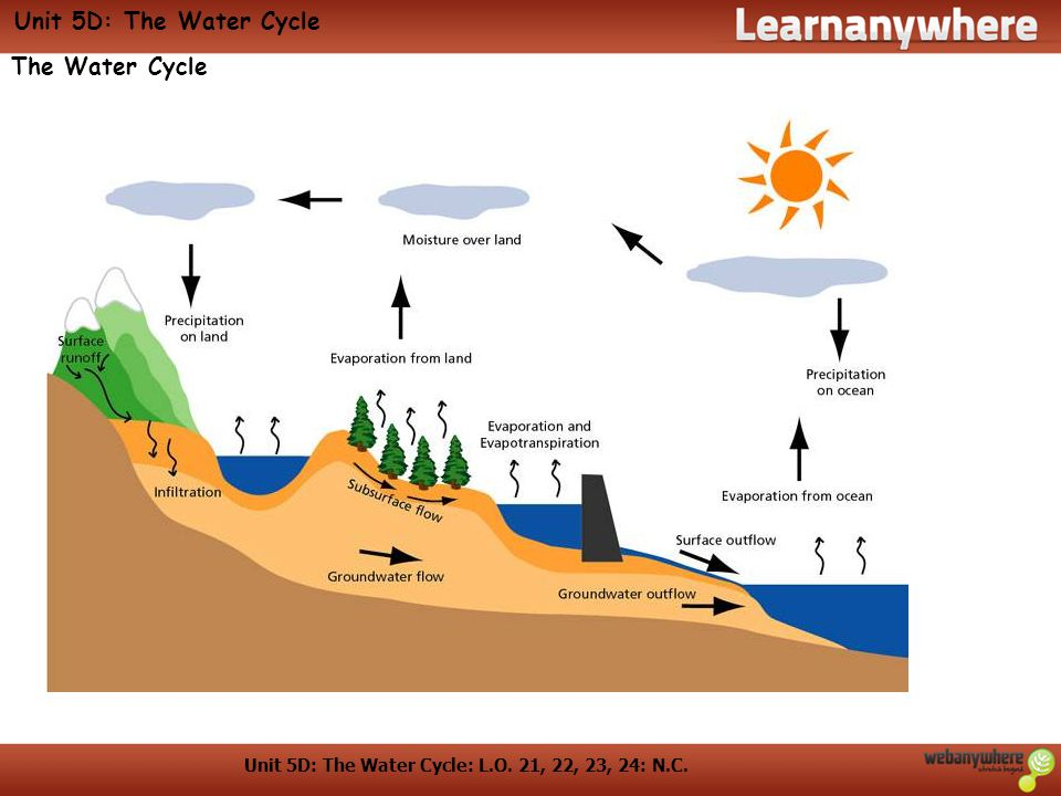 Unit 5D: The Water Cycle: L.O. 21, 22, 23, 24: N.C. Unit 5D: The Water Cycle The Water Cycle