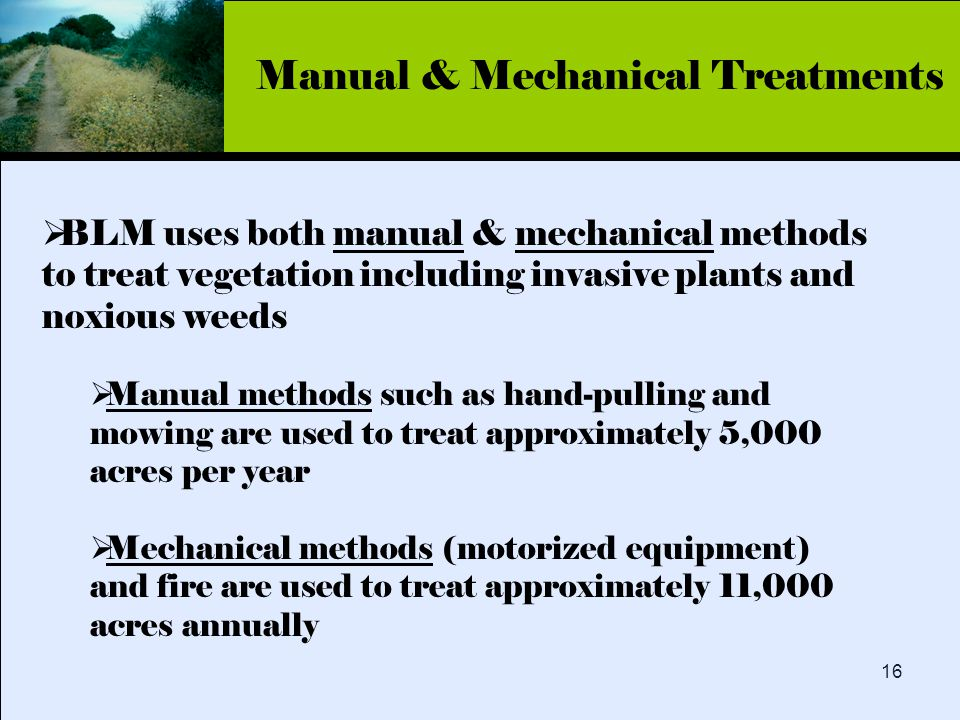 Click to edit Master title style 16  BLM uses both manual & mechanical methods to treat vegetation including invasive plants and noxious weeds  Manual methods such as hand-pulling and mowing are used to treat approximately 5,000 acres per year  Mechanical methods (motorized equipment) and fire are used to treat approximately 11,000 acres annually Manual & Mechanical Treatments