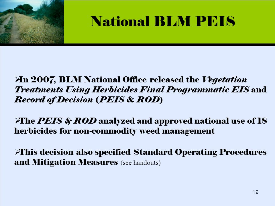 Click to edit Master title style 19  In 2007, BLM National Office released the Vegetation Treatments Using Herbicides Final Programmatic EIS and Record of Decision (PEIS & ROD)  The PEIS & ROD analyzed and approved national use of 18 herbicides for non-commodity weed management  This decision also specified Standard Operating Procedures and Mitigation Measures (see handouts) National BLM PEIS