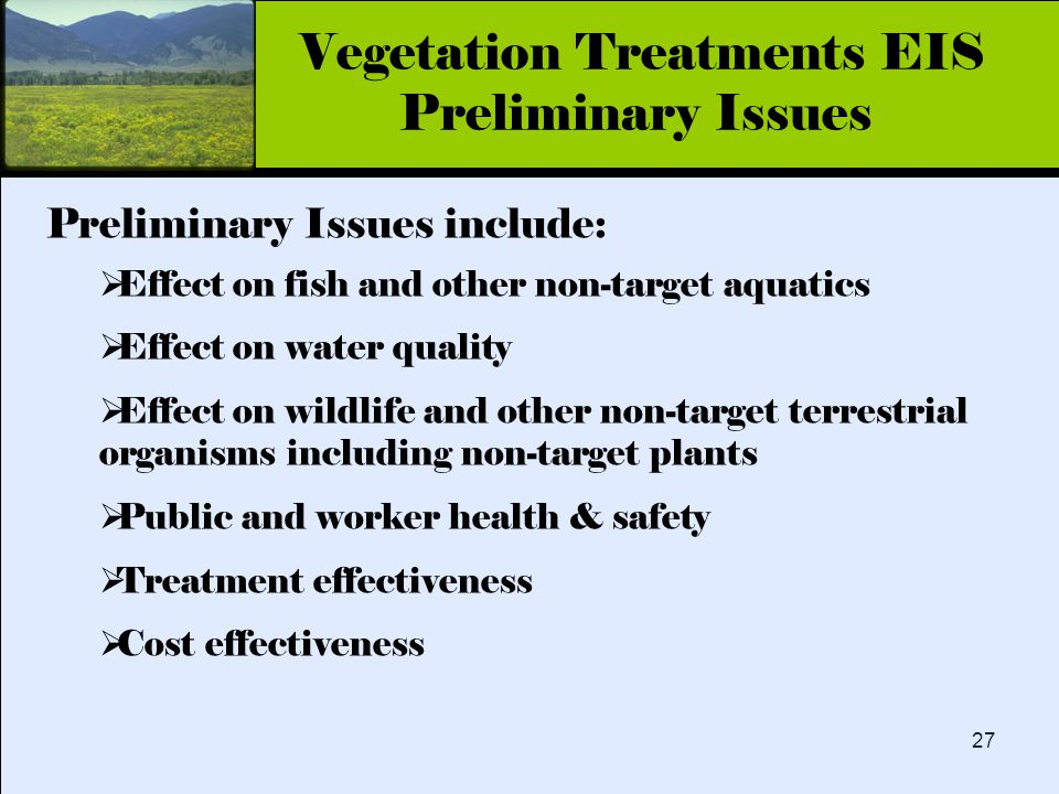 Click to edit Master title style 27 Preliminary Issues include:  Effect on fish and other non-target aquatics  Effect on water quality  Effect on wildlife and other non-target terrestrial organisms including non-target plants  Public and worker health & safety  Treatment effectiveness  Cost effectiveness Vegetation Treatments EIS Preliminary Issues