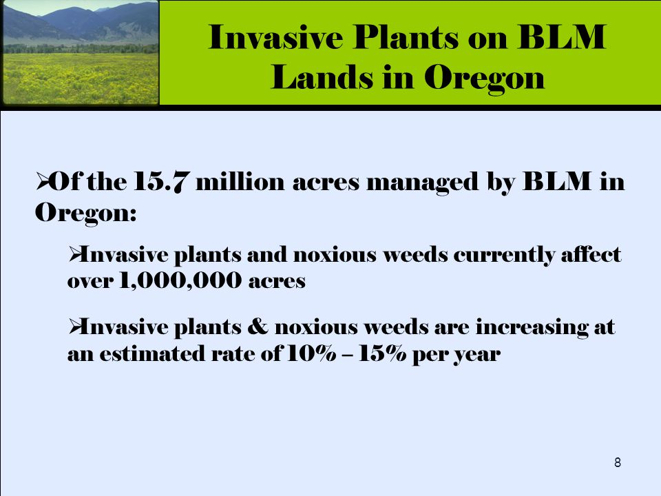 Click to edit Master title style 8  Of the 15.7 million acres managed by BLM in Oregon:  Invasive plants and noxious weeds currently affect over 1,000,000 acres  Invasive plants & noxious weeds are increasing at an estimated rate of 10% – 15% per year Invasive Plants on BLM Lands in Oregon