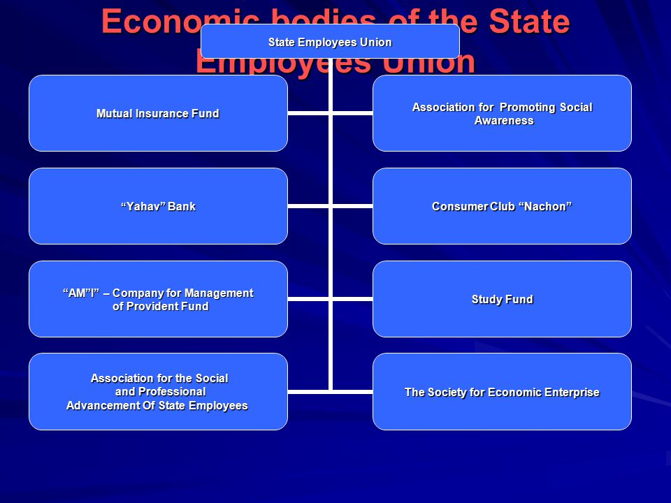 Economic bodies of the State Employees Union State Employees Union Mutual Insurance Fund Association for Promoting Social Awareness Awareness Yahav Bank Consumer Club Nachon AM I – Company for Management of Provident Fund of Provident Fund Study Fund Association for the Social and Professional and Professional Advancement Of State Employees The Society for Economic Enterprise