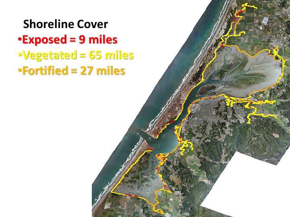 Shoreline Cover Exposed = 9 miles Exposed = 9 miles Vegetated = 65 miles Vegetated = 65 miles Fortified = 27 miles Fortified = 27 miles