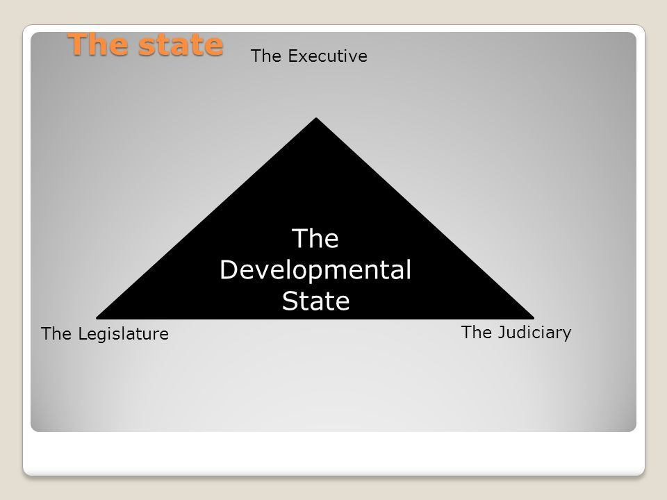 The state The Executive The Developmental State The Legislature The Judiciary