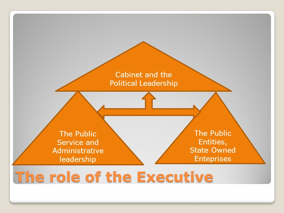 The role of the Executive Cabinet and the Political Leadership The Public Service and Administrative leadership The Public Entities, State Owned Enteprises