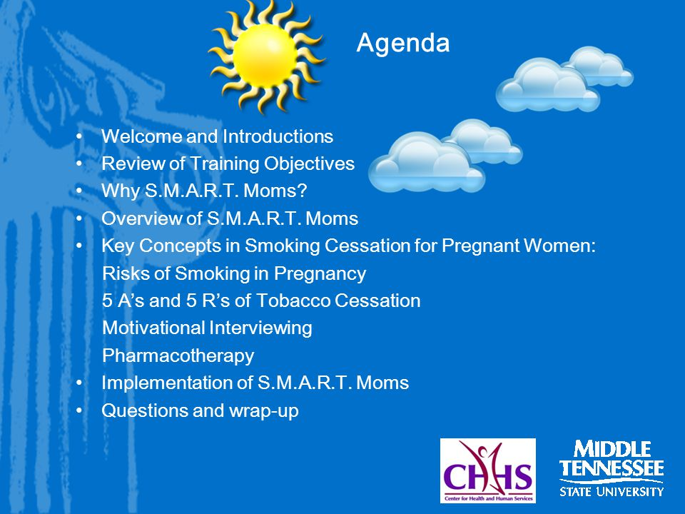 Agenda Welcome and Introductions Review of Training Objectives Why S.M.A.R.T.