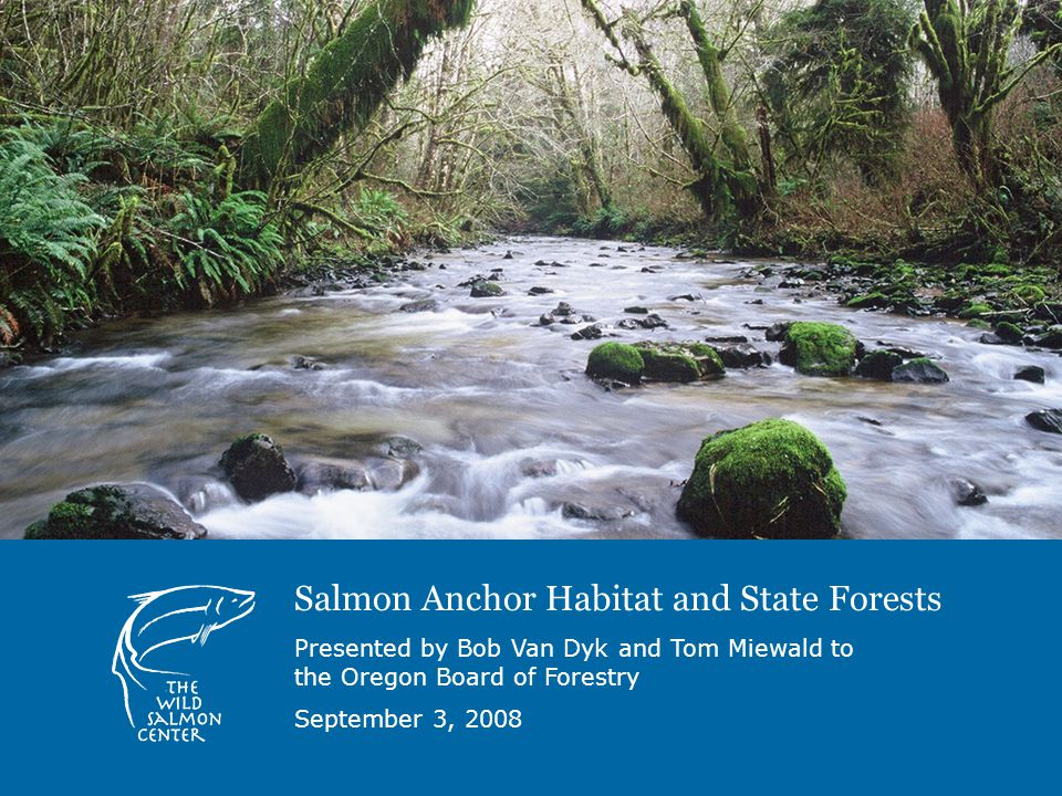 Salmon Anchor Habitat and State Forests Presented by Bob Van Dyk and Tom Miewald to the Oregon Board of Forestry September 3, 2008