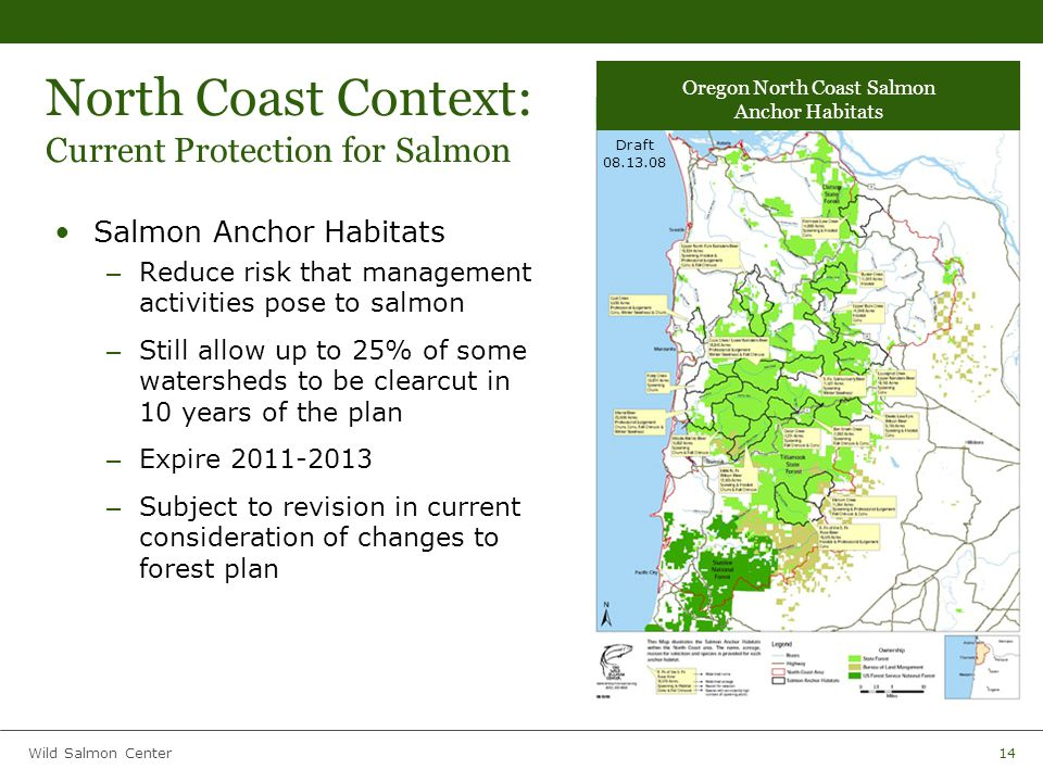 Wild Salmon Center14 North Coast Context: Current Protection for Salmon Salmon Anchor Habitats – Reduce risk that management activities pose to salmon – Still allow up to 25% of some watersheds to be clearcut in 10 years of the plan – Expire 2011-2013 – Subject to revision in current consideration of changes to forest plan Oregon North Coast Salmon Anchor Habitats Draft 08.13.08