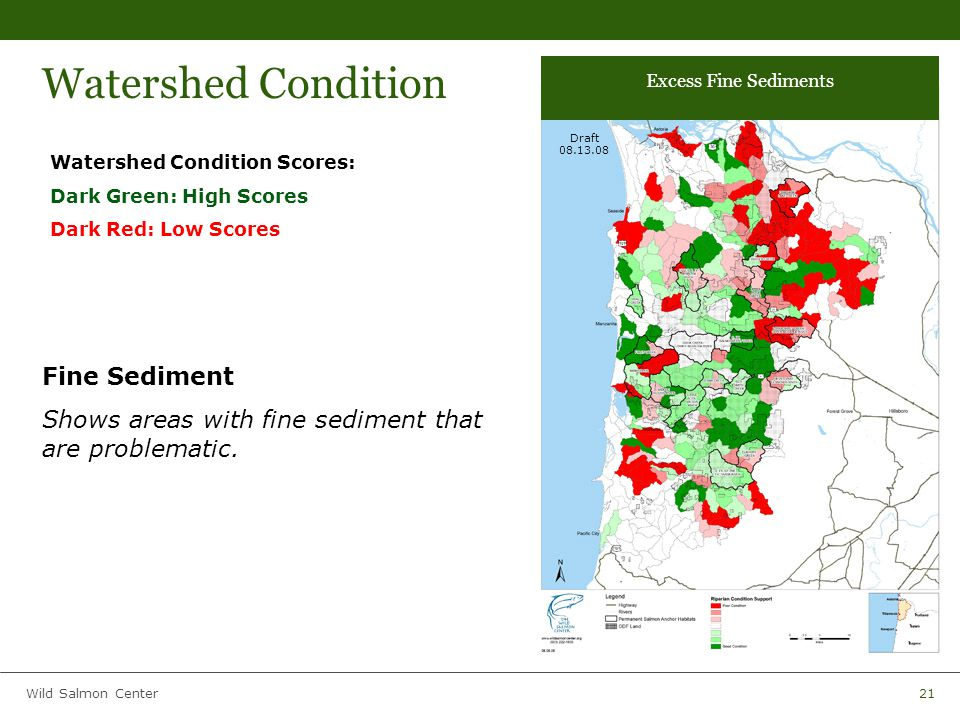 Wild Salmon Center21 Watershed Condition Watershed Condition Scores: Dark Green: High Scores Dark Red: Low Scores Fine Sediment Shows areas with fine sediment that are problematic.