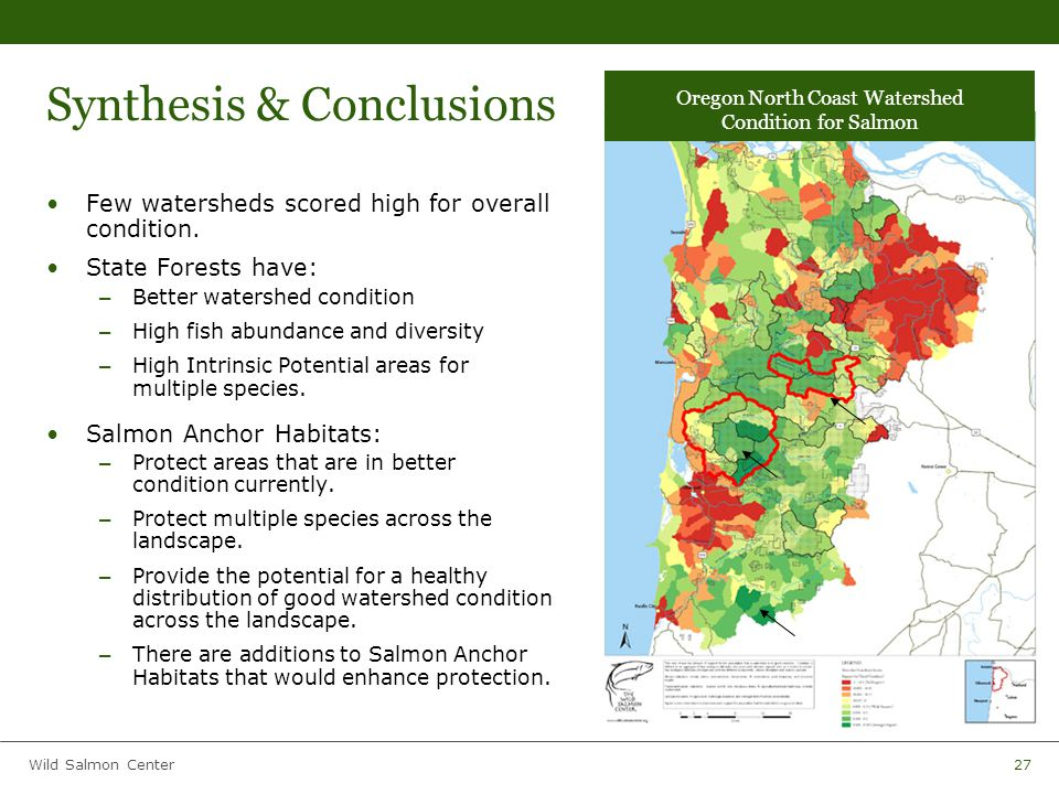 Wild Salmon Center27 Synthesis & Conclusions Few watersheds scored high for overall condition.