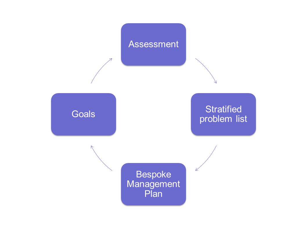Assessment Stratified problem list Bespoke Management Plan Goals