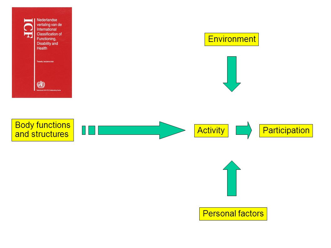 Body functions and structures ActivityParticipation Personal factors Environment