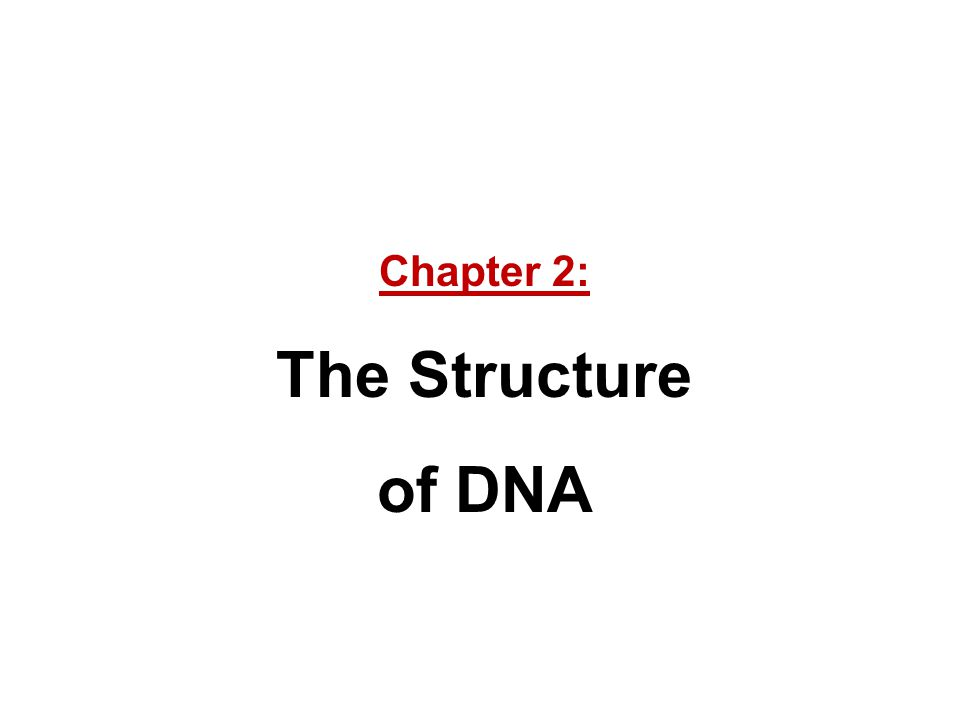 Chapter 2: The Structure of DNA