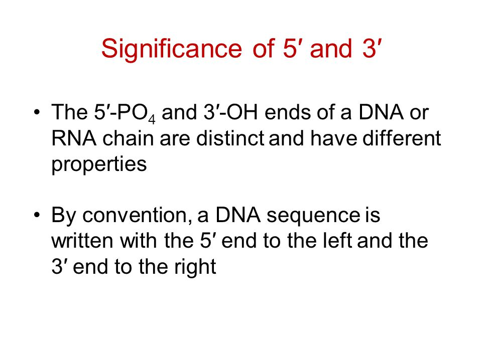 Significance of 5′ and 3′ The 5′-PO 4 and 3′-OH ends of a DNA or RNA chain are distinct and have different properties By convention, a DNA sequence is written with the 5′ end to the left and the 3′ end to the right