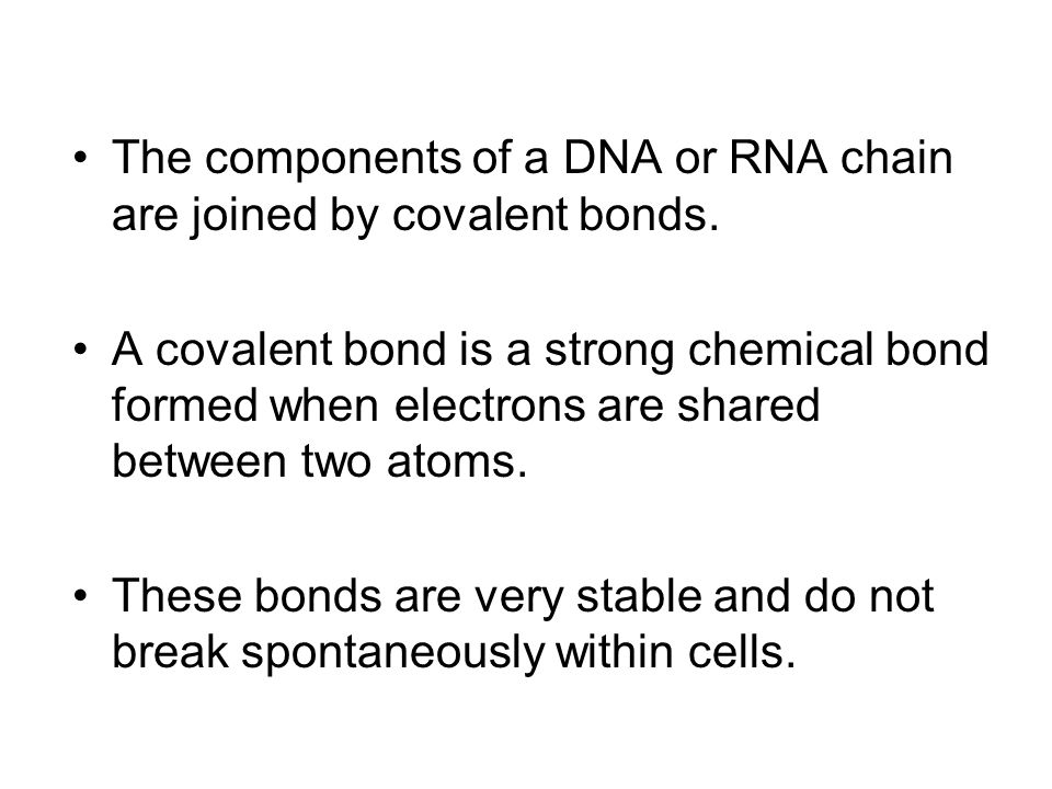 The components of a DNA or RNA chain are joined by covalent bonds.