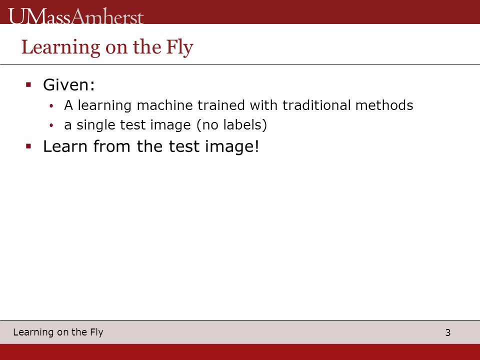 3 Learning on the Fly  Given: A learning machine trained with traditional methods a single test image (no labels)  Learn from the test image!